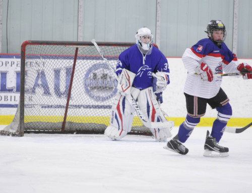 Spielbericht PeeWee 2014 (Exhibition Game): ZSC Lions vs Slovakia 3:1